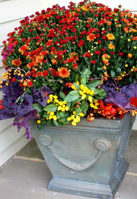 Garden Lovers Club & 20 Fabulous Fall Container Garden Ideas - Garden Lovers Club