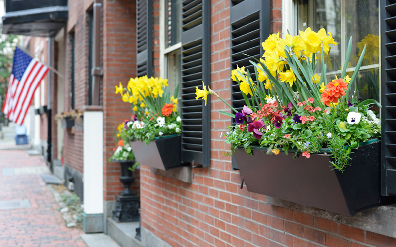fall-window-boxes-07sm