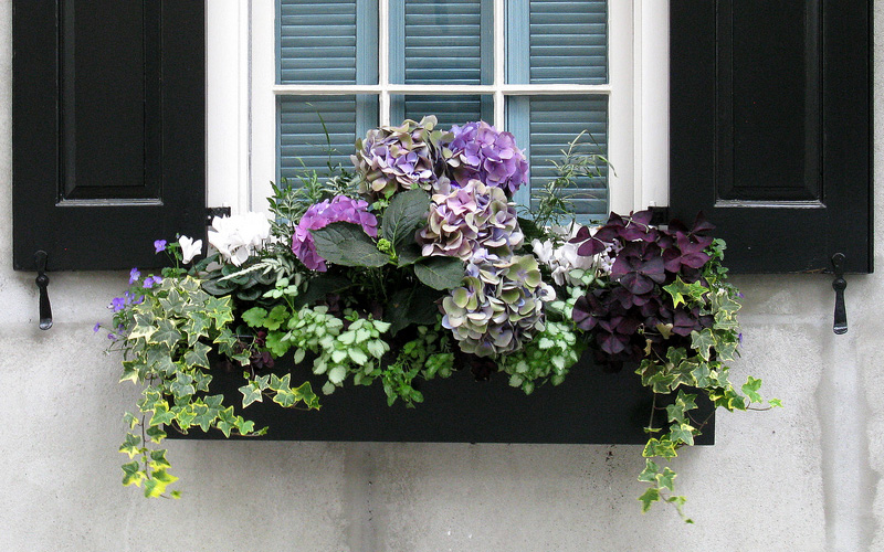 fall-window-boxes-09sm
