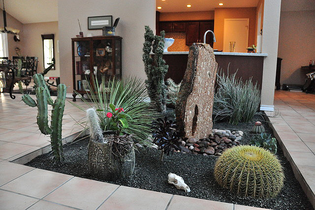 Awesome Cactus Garden Idea 12sm