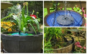 8 Perfect Spots For a Solar Fountain Pump