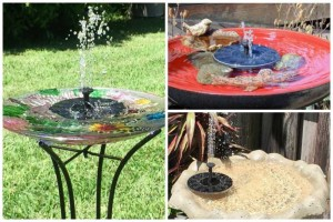 13 Solar Water Fountain Pump Ideas