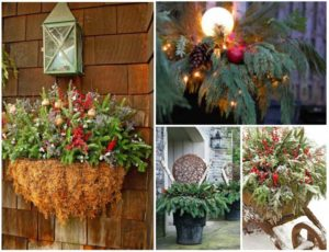 10 Fabulous Winter Container Garden Ideas