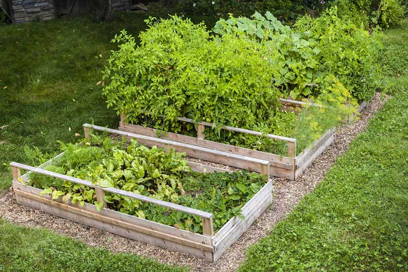 We love garden boxes because they're not only functional, they add a fresh layer of beauty to any garden. First of all, they'll raise your plants and frame them in a handsome fashion, while keeping them protected from trampling feet and even water damage during heavy rain.