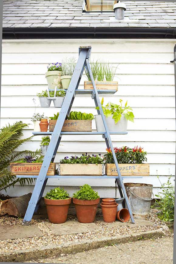 wooden ladder plant stand