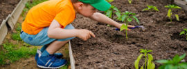 11 Best Plants for Kids to Grow
